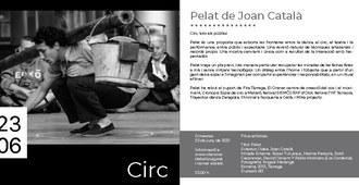 Pelat de Joan Català